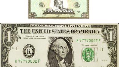 gourde dollar 1